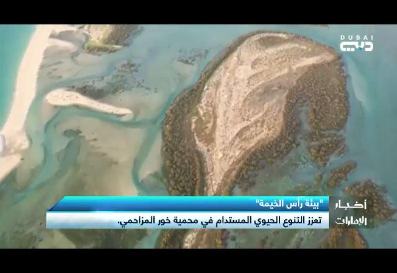 تقرير نشرة أخبار الإمارات عن محمية خور المزاحمي