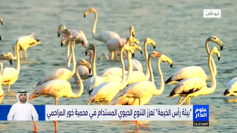 Oloom Al Dar: EPDA promotes sustainable biodiversity in the Khor Al-Muzahmi reserve