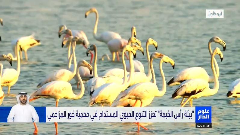 Oloom Al Dar: EPDA promotes sustainable biodiversity in the Khor Al-Muzahmi reserve